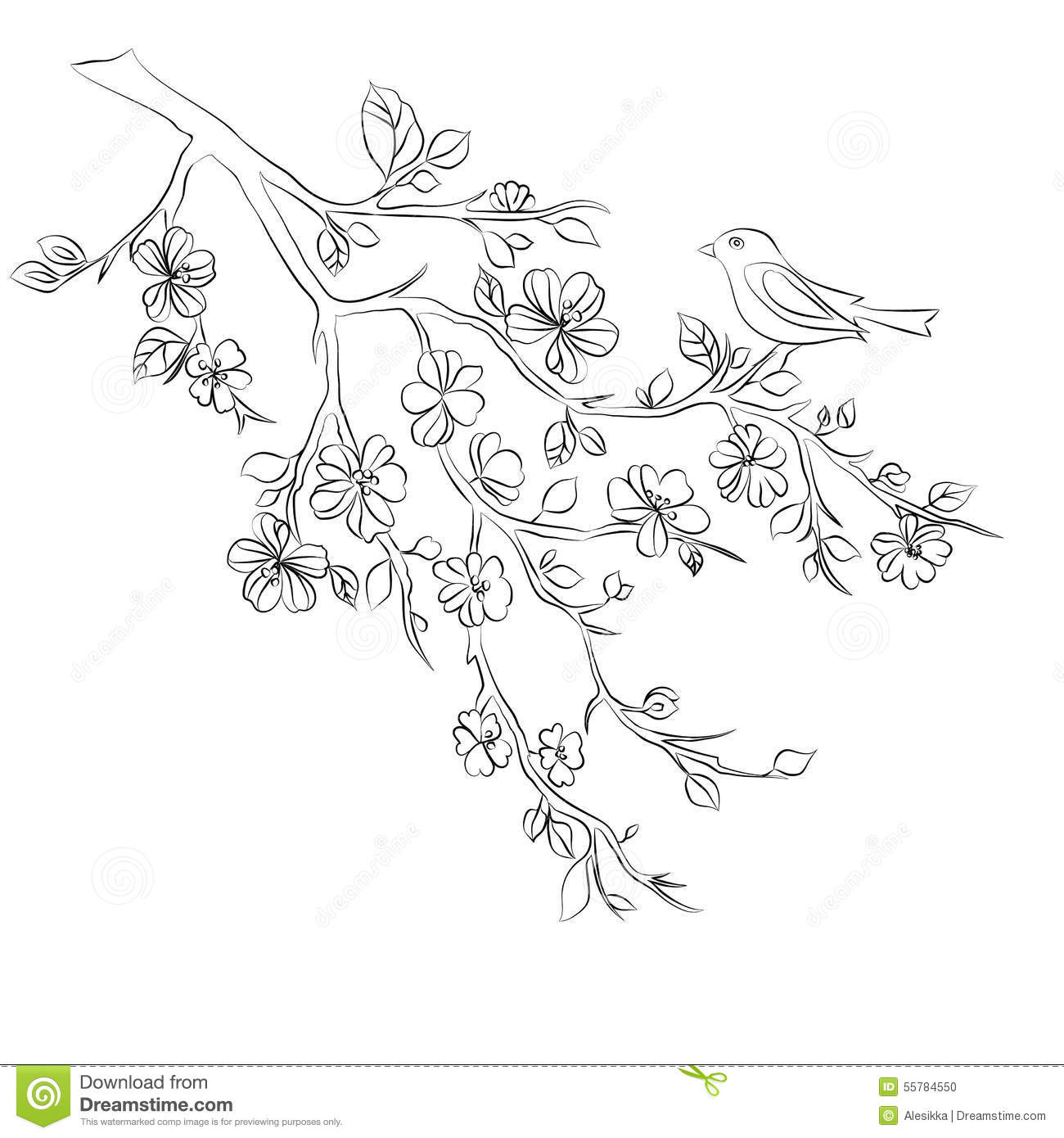 Twig Cherry Blossoms And Bird Stock Photo Image Of Decoration