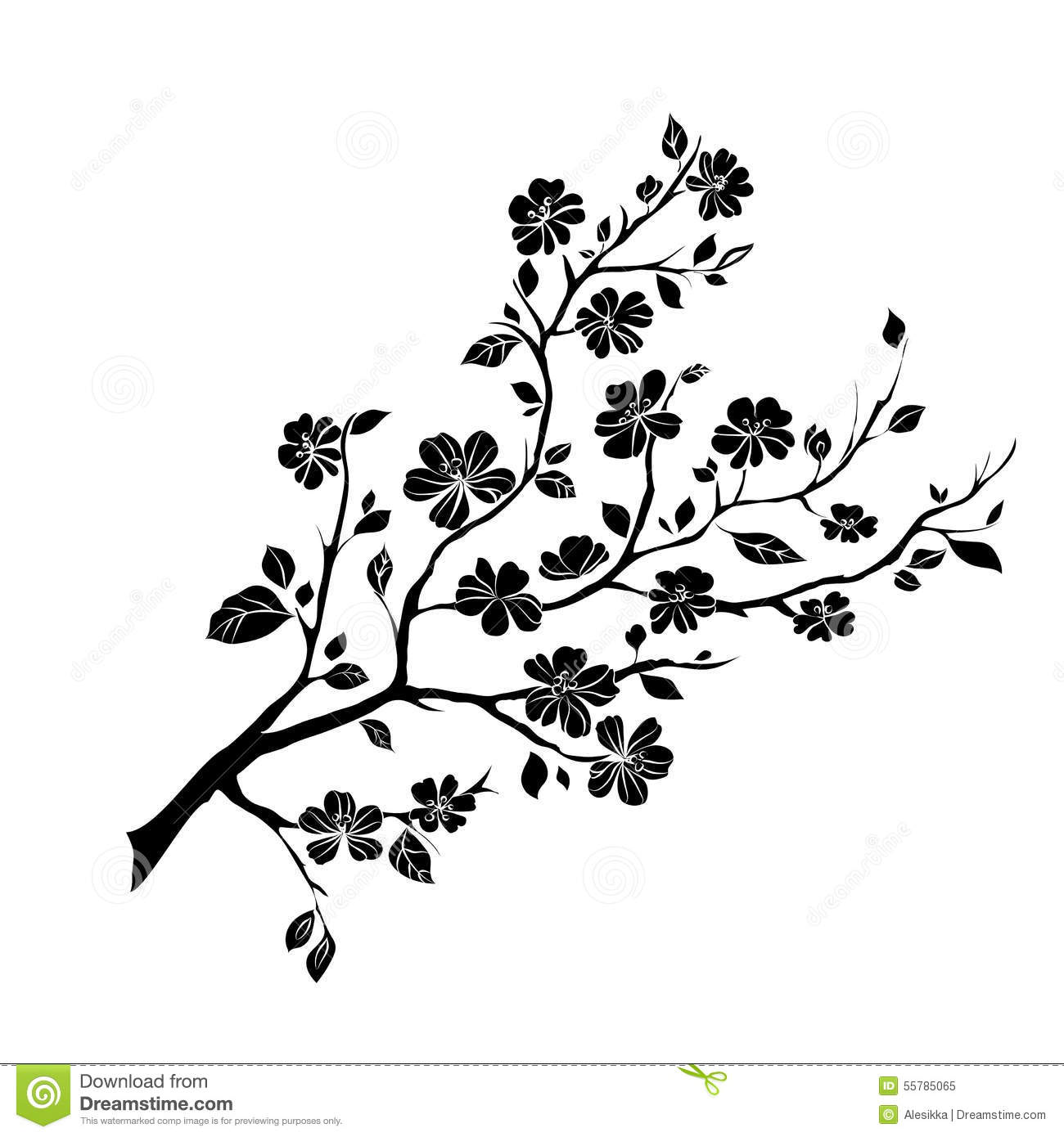 Twig Cherry Blossoms Stock Illustration Image 55785065