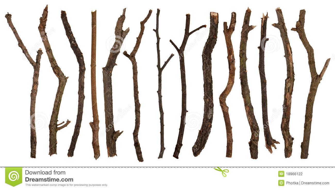 Twigs Stock Photography - Image: 18966122