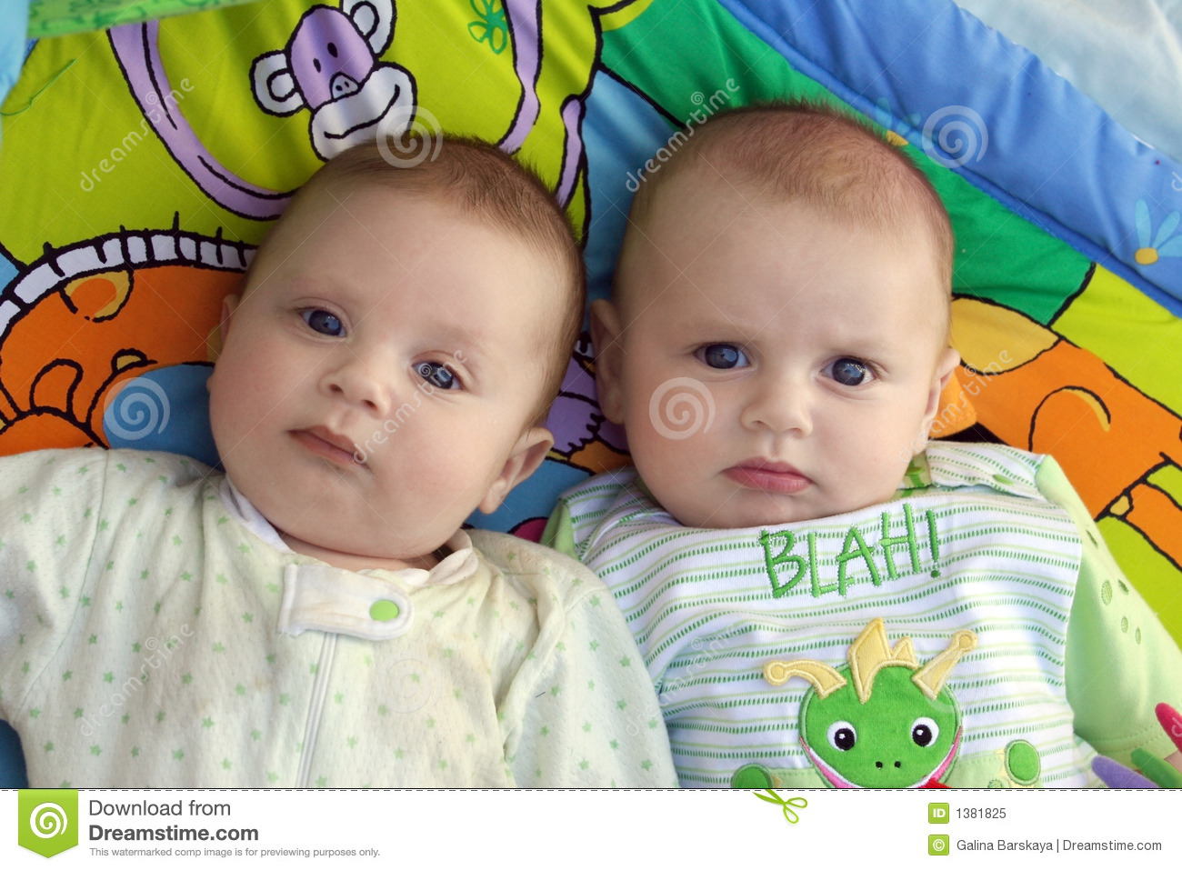Twin Baby Boys Stock Image Image Of Cute Looking Twins 1381825