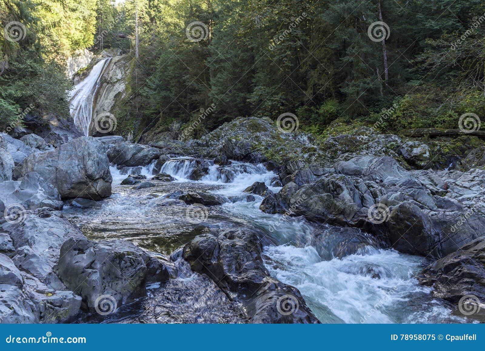 Twin Falls stock image  Image of rapid, adventure, flow