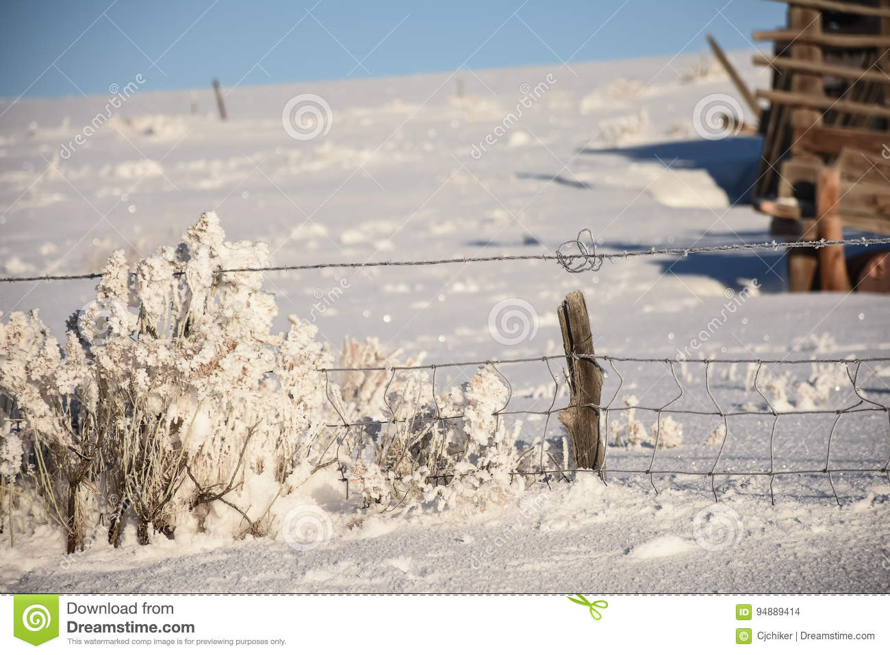 Twisted Wire By Rabbitbrush In Winter Stock Photo - Image of winter ...