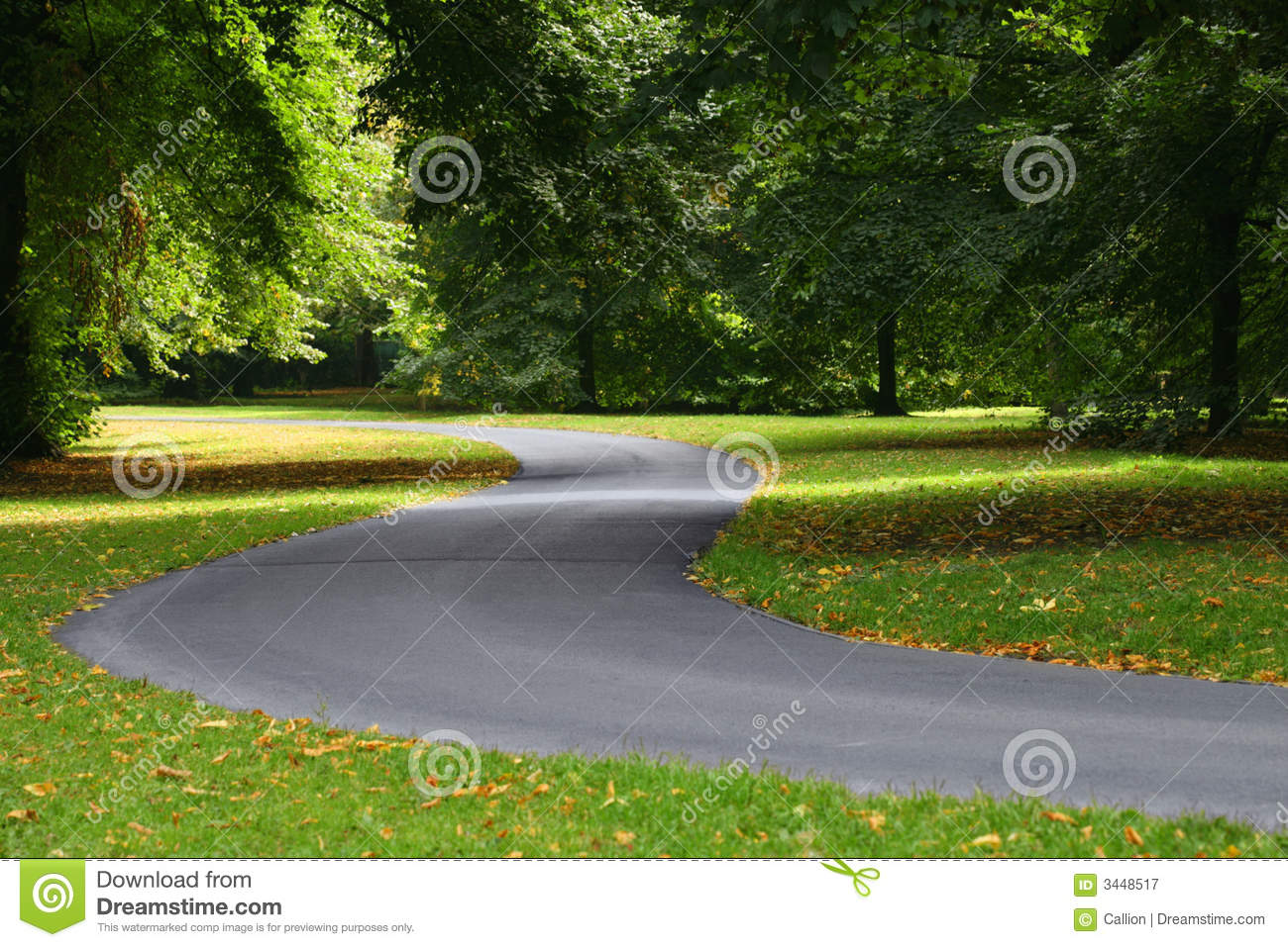 clear twisting path or road winds through trees  very green and    Journey Path Road