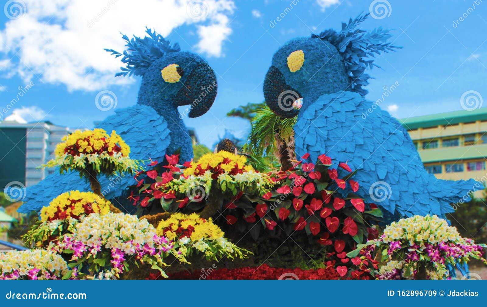 Twitter Inspired Flower Arrangement Displayed at a Flower Festival ...