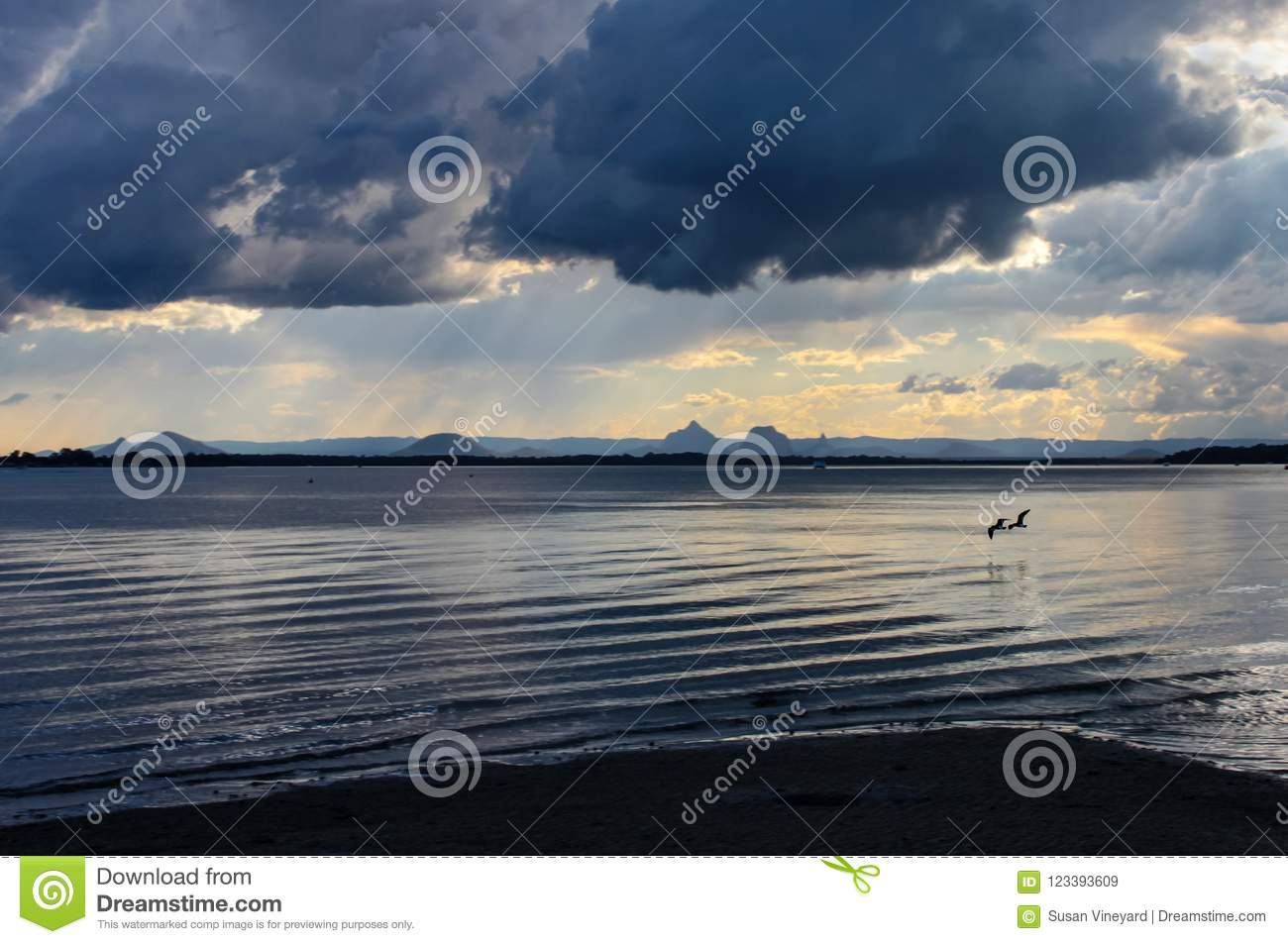 Two birds flying low over the water near sunset under a dramatic ominous sky will rain falling on the distant mountains - Bribie I