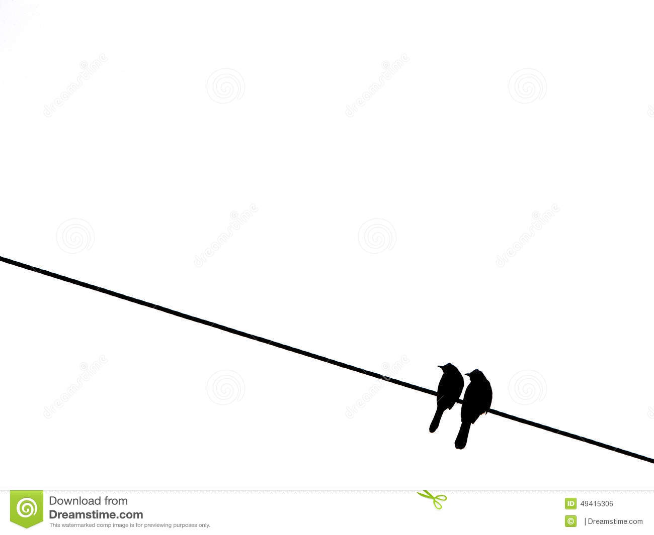 Two birds on the wire stock photo. Image of isolated - 49415306