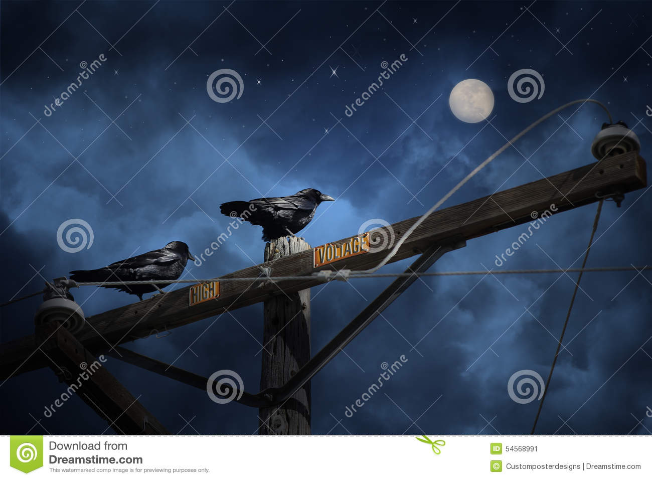 Download Two black crows. stock image. Image of avian, ravens - 54568991
