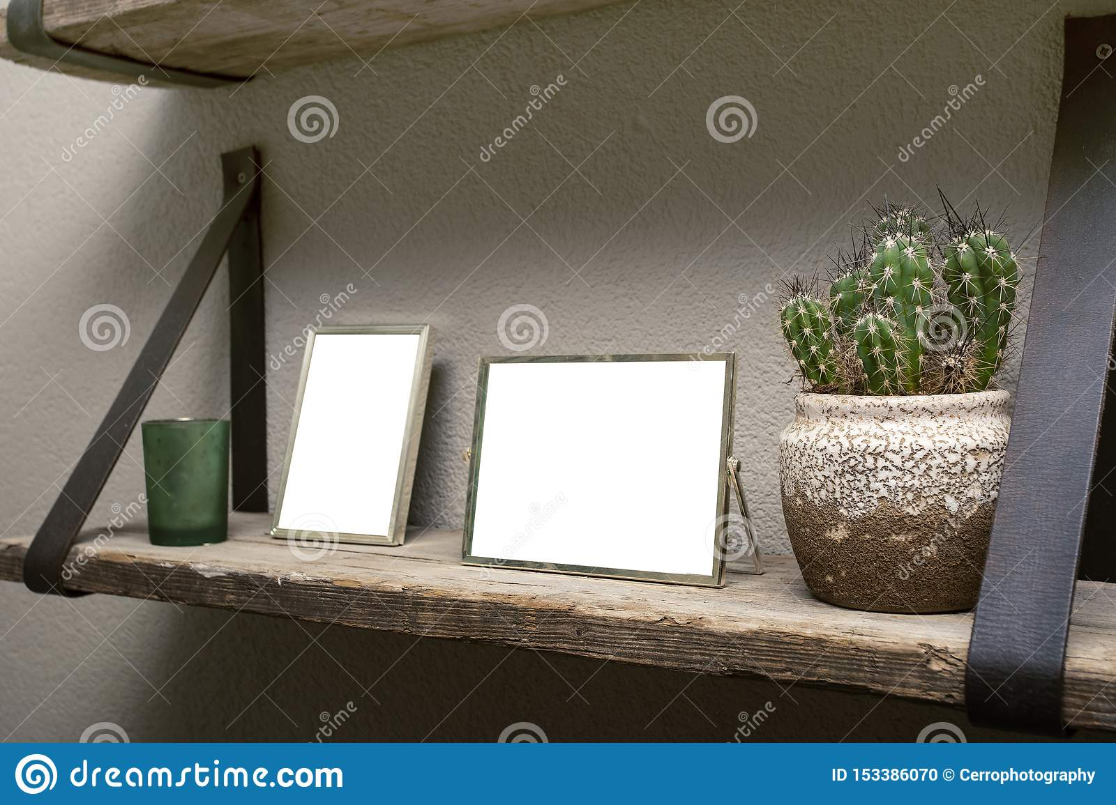 Two blank picture frames and cactus decoration on wooden shelf, industrial retro interior design