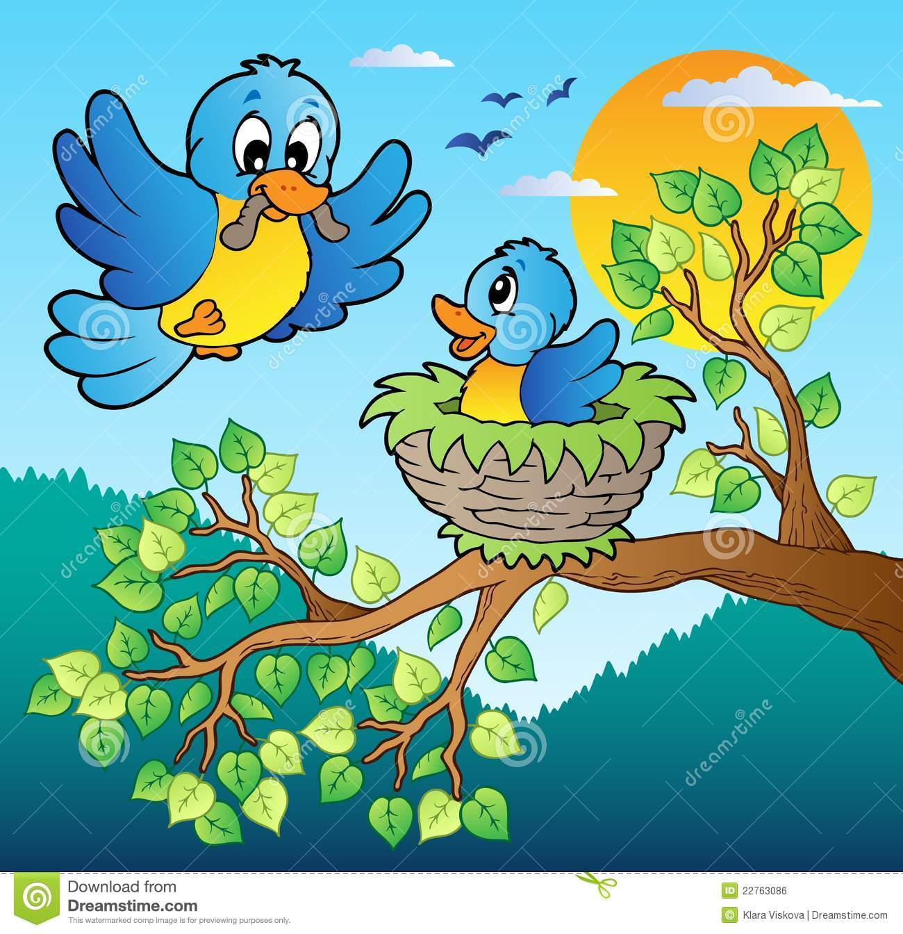 two blue birds with tree branch stock vector image 22763086