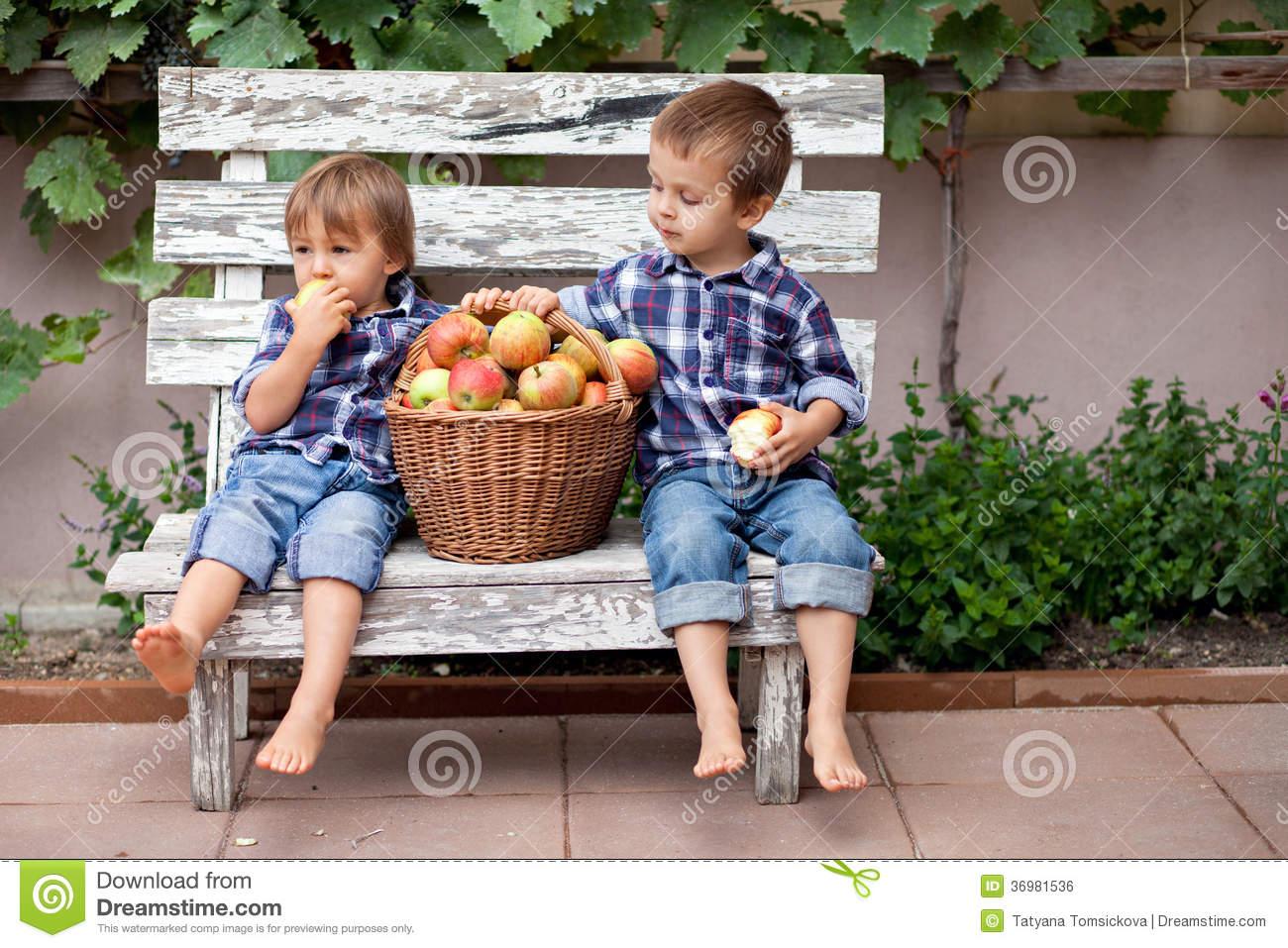 two boys eating apples royalty free stock image image