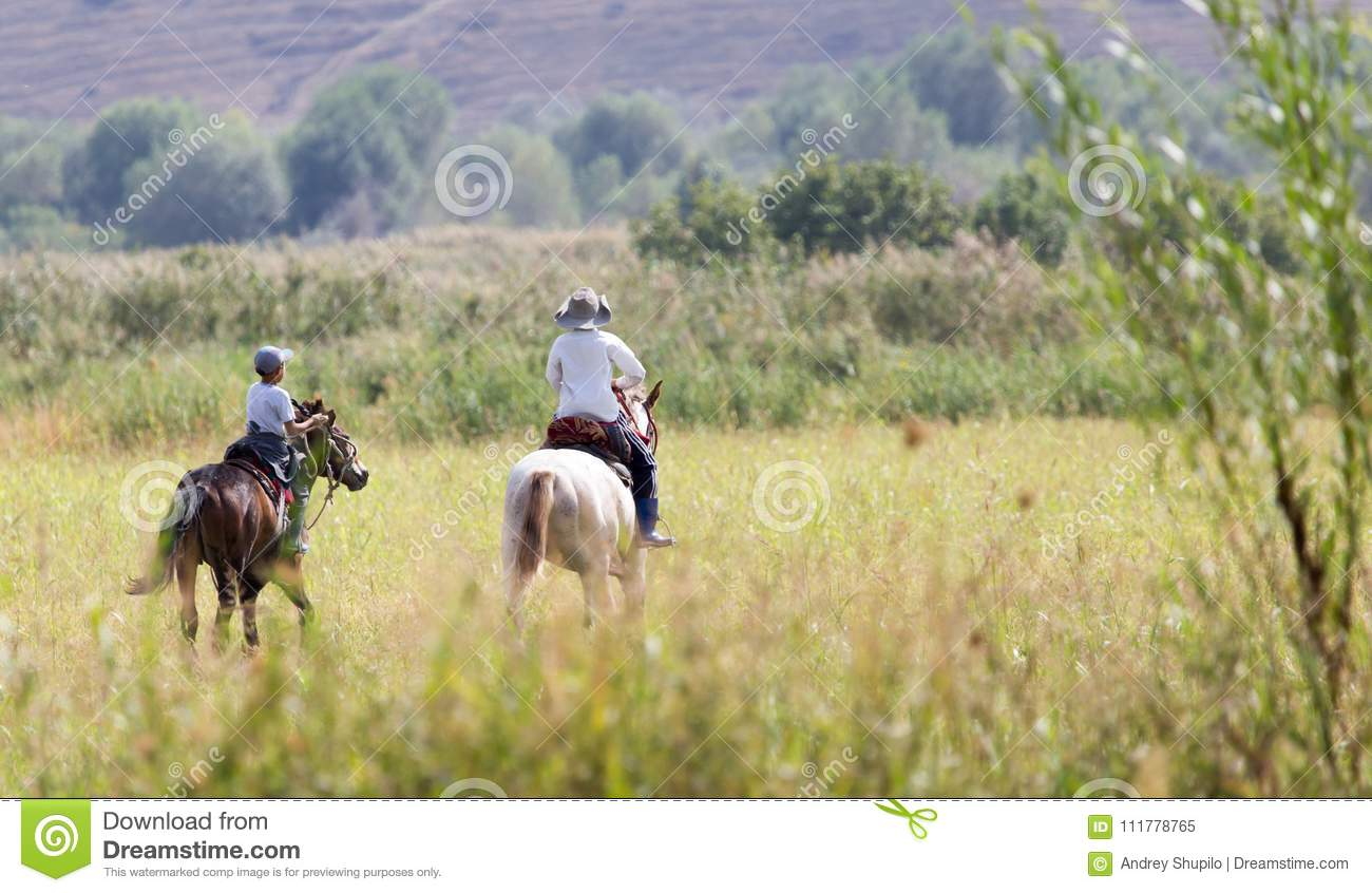 Two boys on a horse on nature