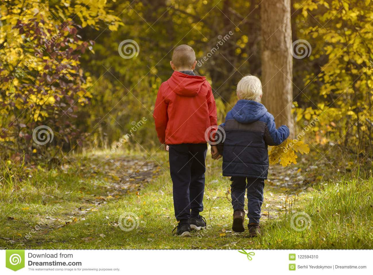 Two boys walking in the autumn park. Sunny day. Back view