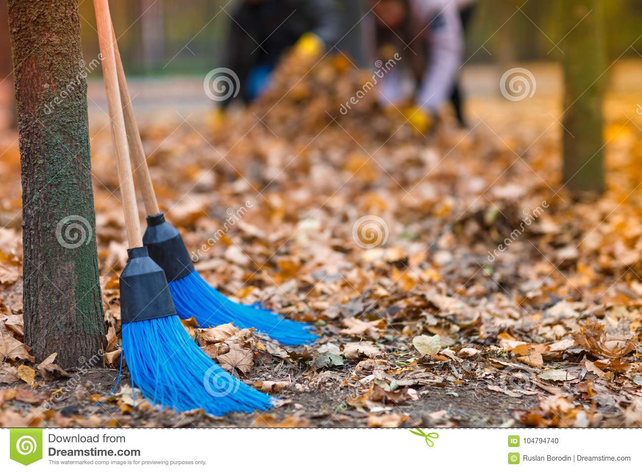 Two Brooms For Cleaning Leaves, In An Autumn Park, Against The