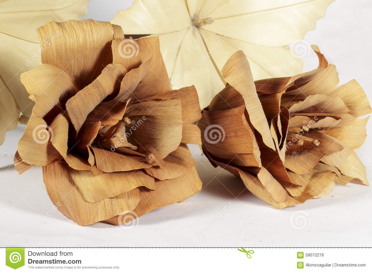 Two Brown Paper Flowers In Front Of Other Cream Stock Photo Image