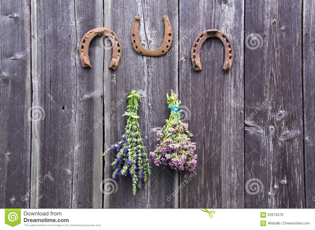 Two bundles of oregano and hyssop herbs and three horseshoes on wall