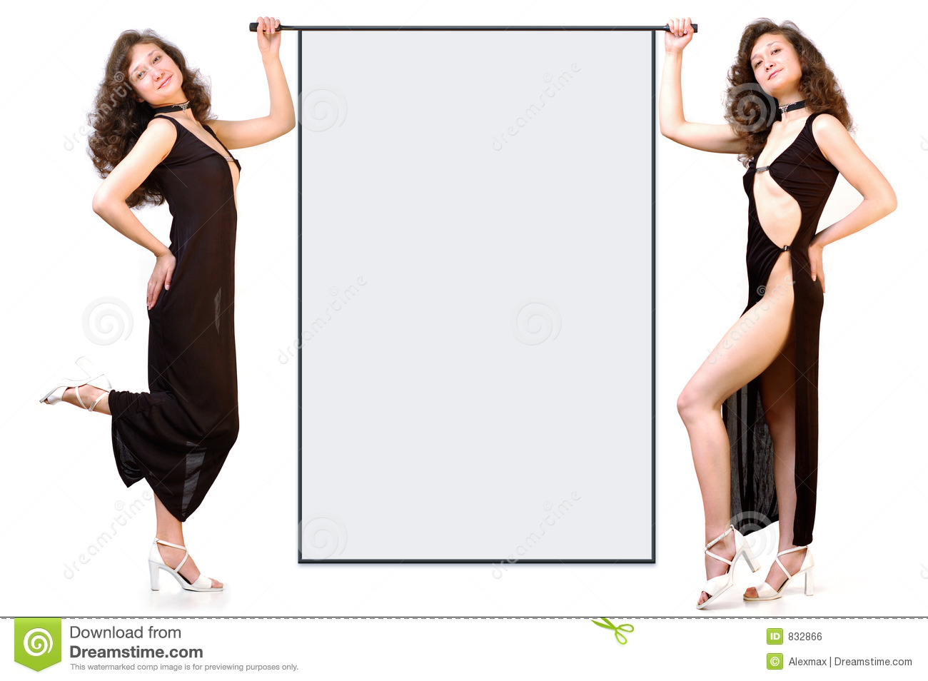 Two business women holding blank tablet isolated background