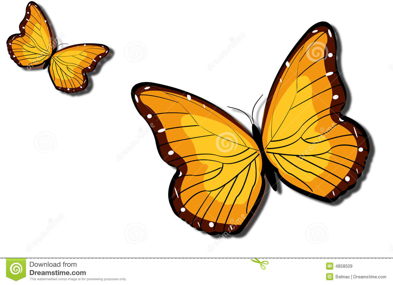 in the time of butterflies vs Get everything you need to know about courage vs cowardice in in the time of the butterflies analysis, related quotes, theme tracking the theme of courage vs cowardice in in the time of the butterflies from litcharts   the creators of sparknotes.