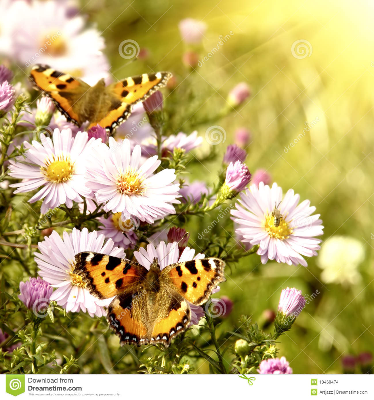 Two Butterfly On Flowers Stock Images - Image: 13468474 Yellow Butterfly Clipart