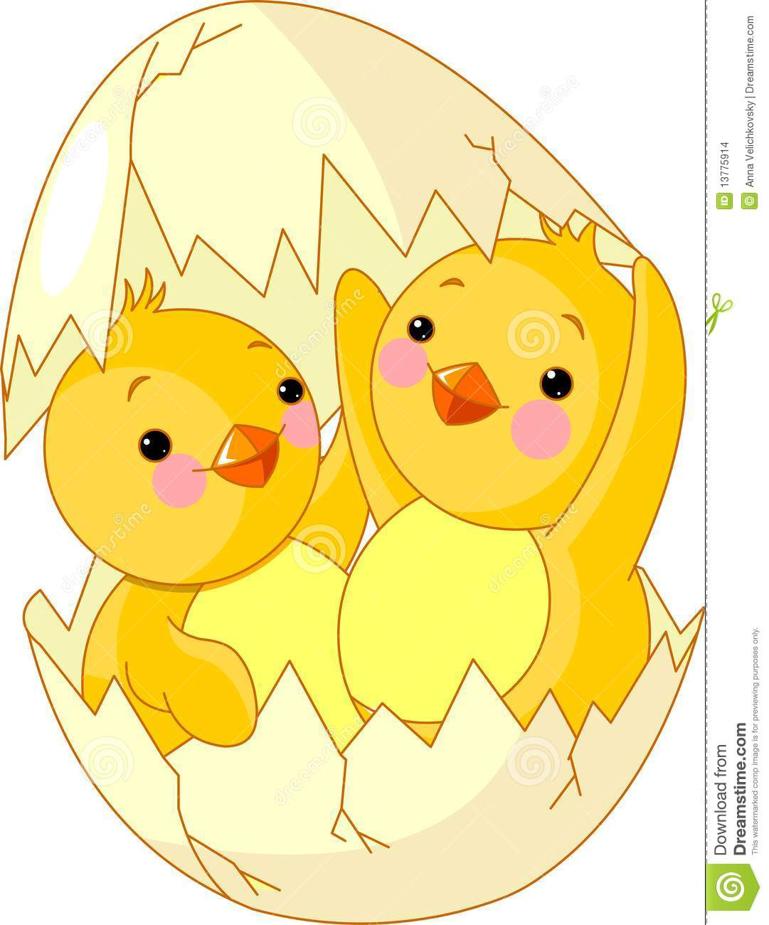 Two Chickens Hatched From Egg Stock Images Image 13775914