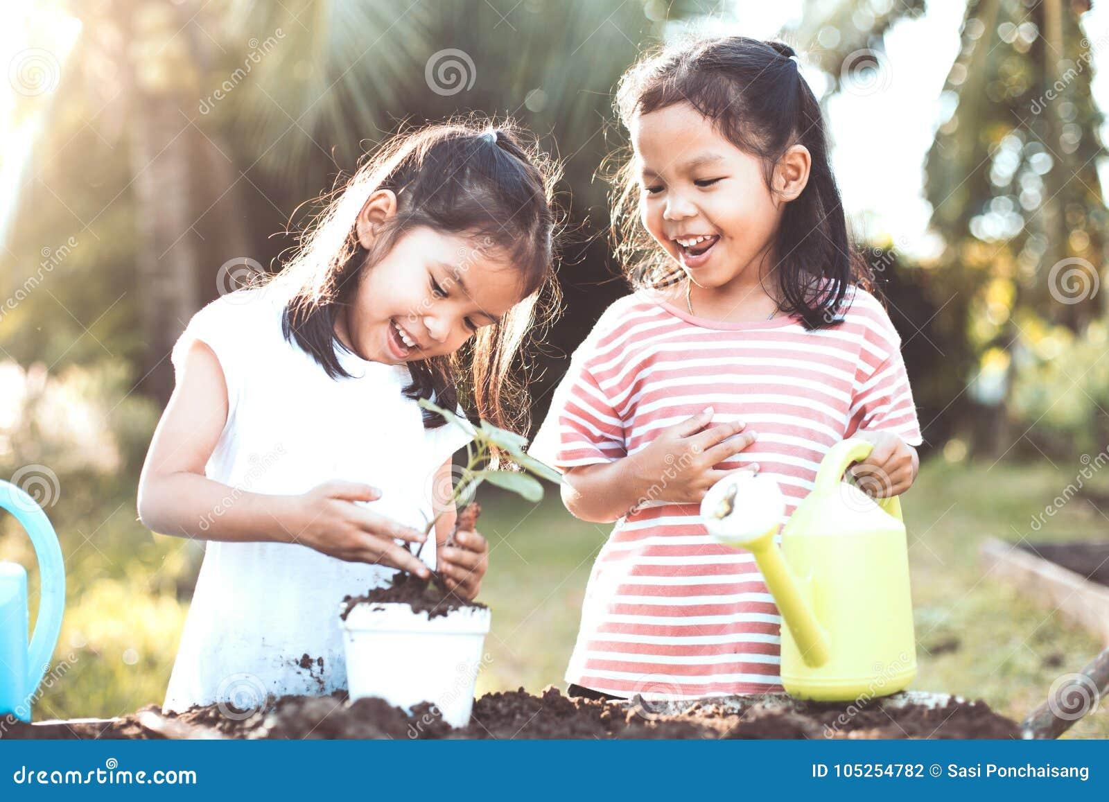 A plant that makes children happy 80