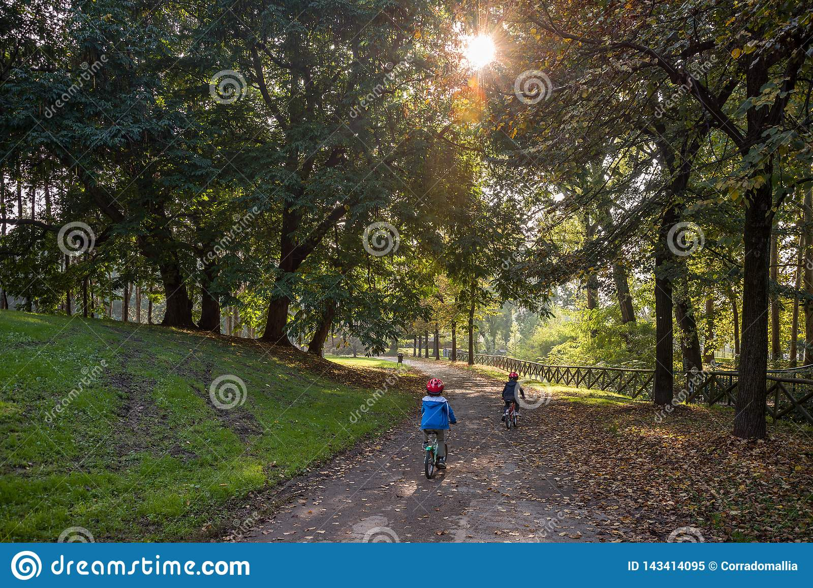 Two children cycling in the forest