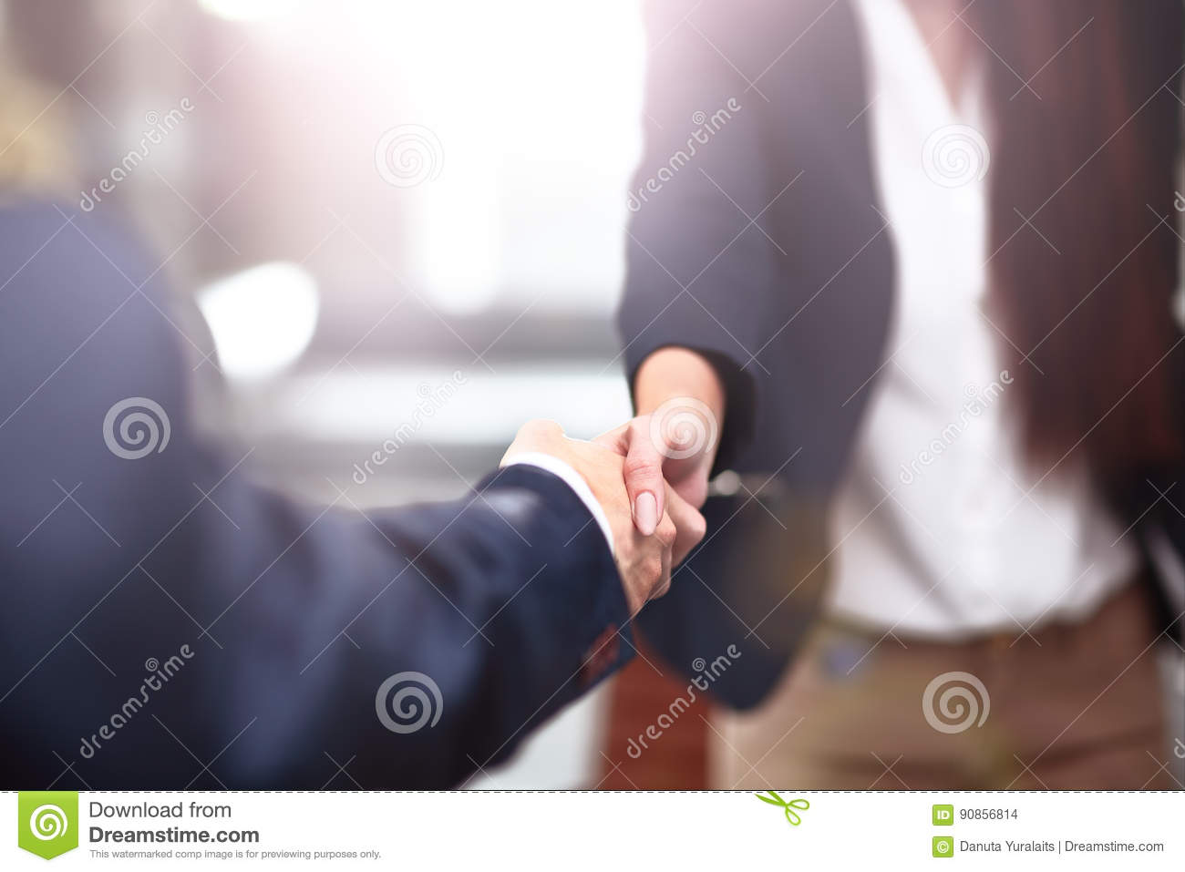 Two confident business man shaking hands during a meeting in office, success, dealing, greeting and partner concept.