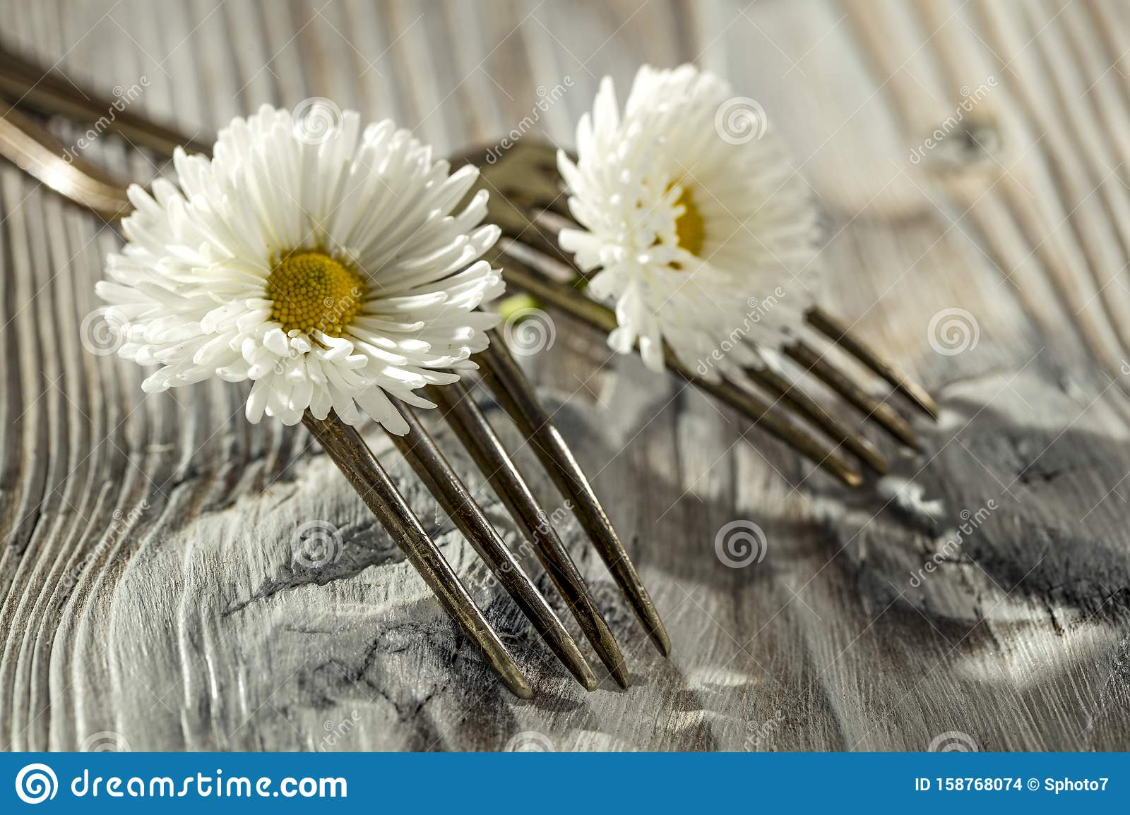 Two crossed forks with small white flowers on vintage wooden board background