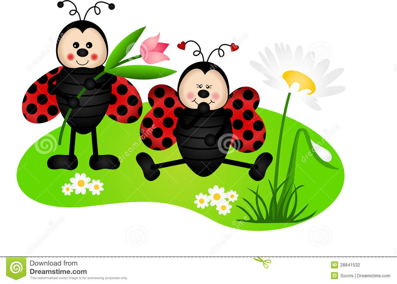 Ladybugs Wallpaper 2017 2018 Best Cars Reviews