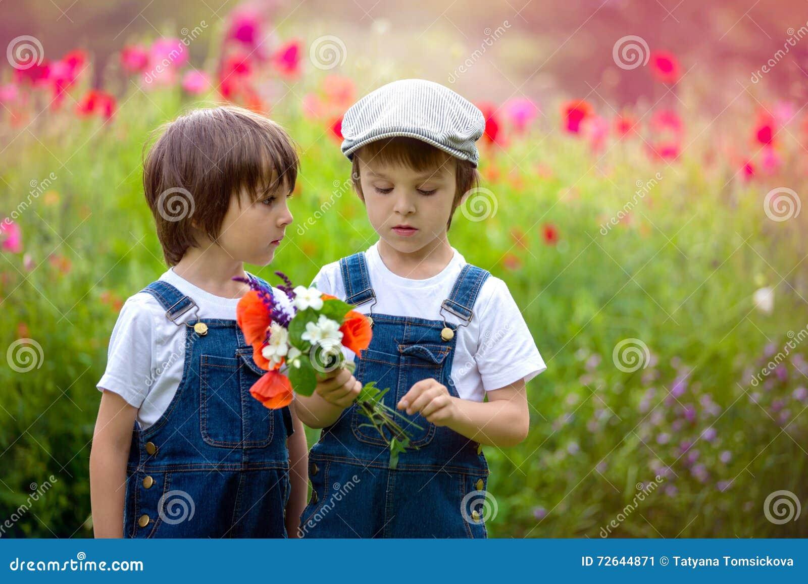 9210598811 Two cute preschool children, boy brothers, in poppy field, holding a  bouquet of