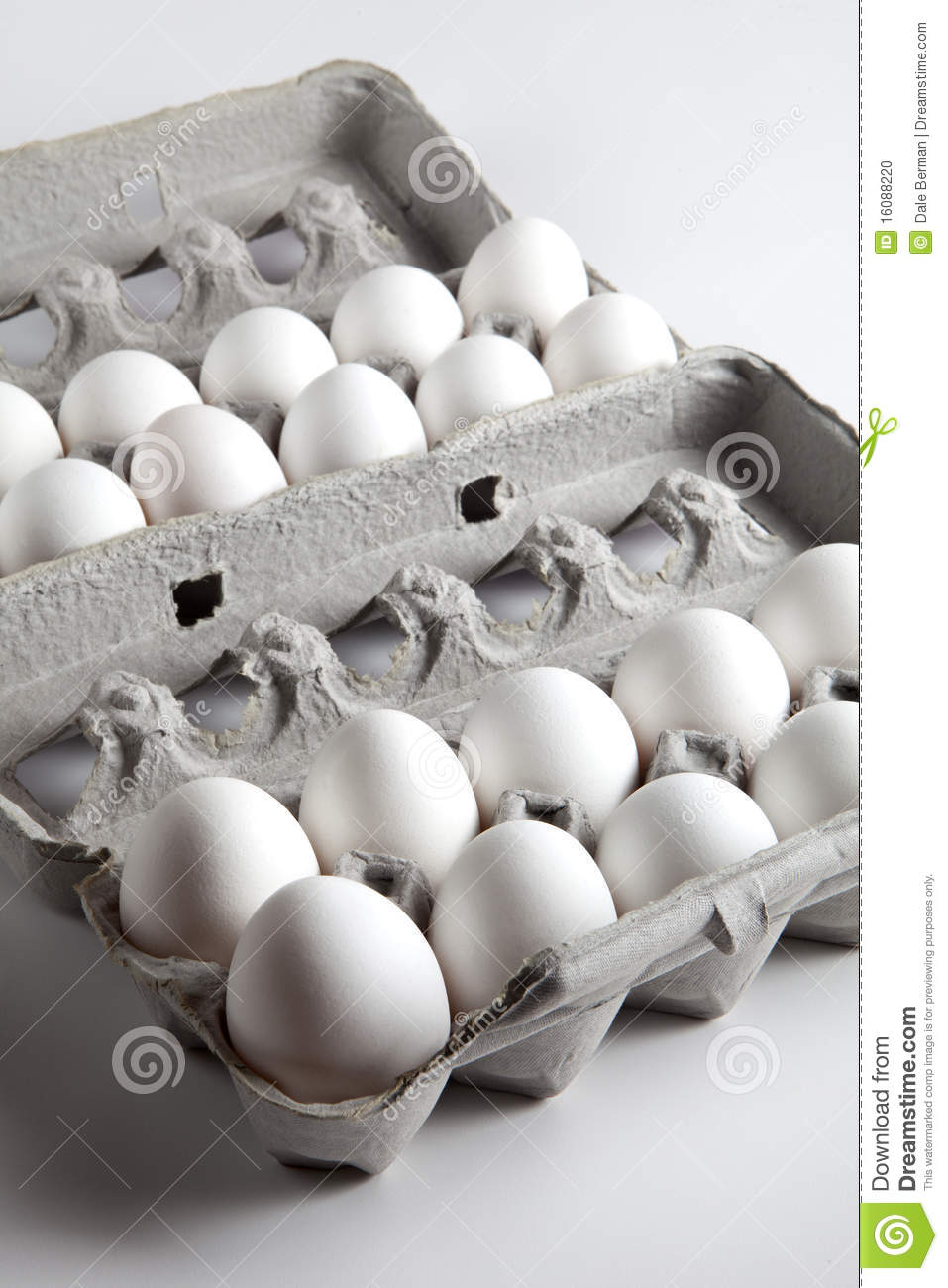 Two Dozen White Eggs Inside Egg Cartons Stock Photo ...