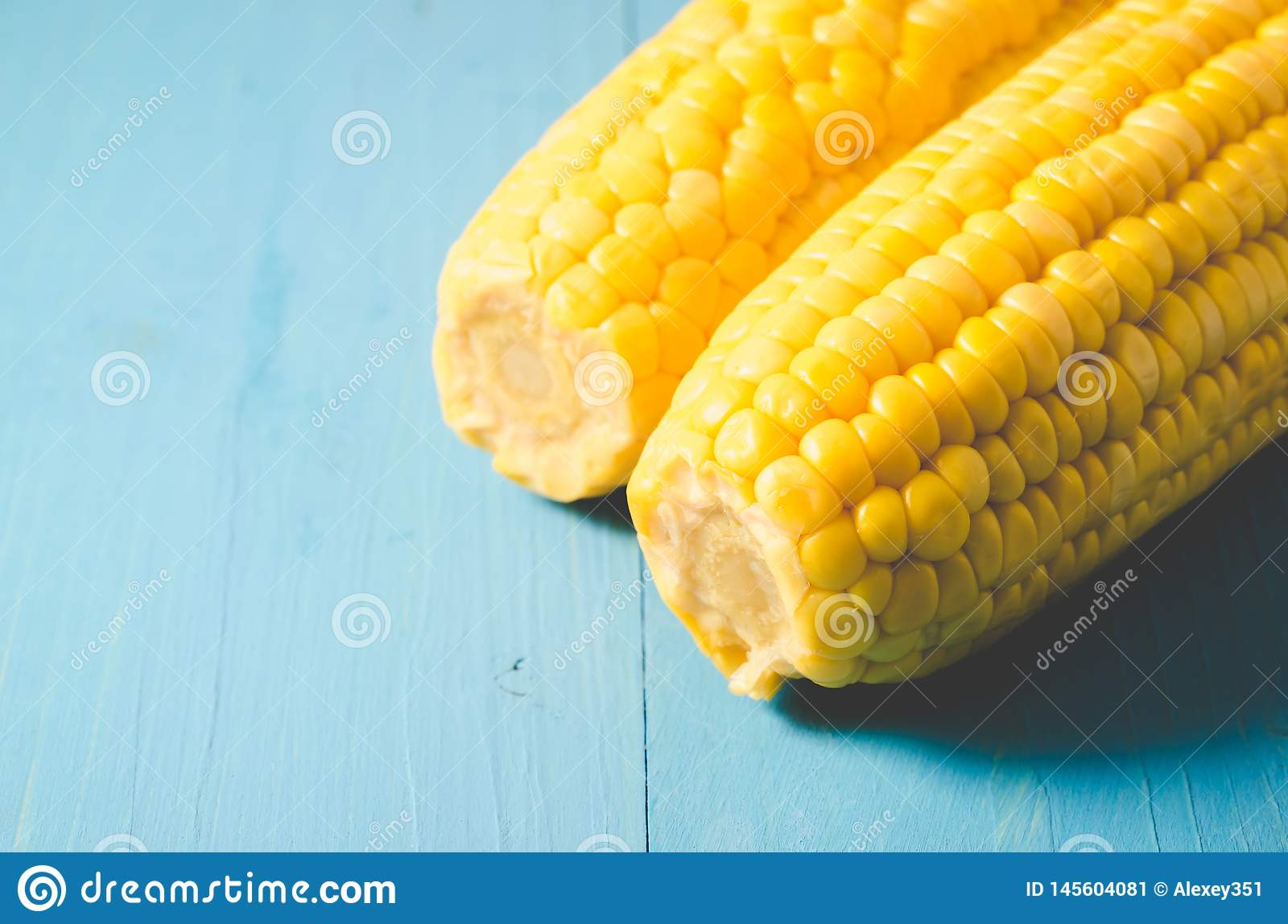 Two ears of boiled appetizing corn on a blue background/two ears of boiled appetizing corn on a blue background. Healthy food.