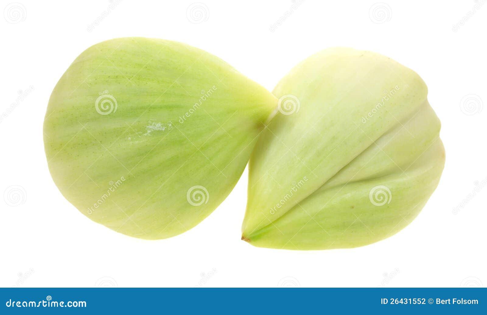 Two elephant garlic cloves