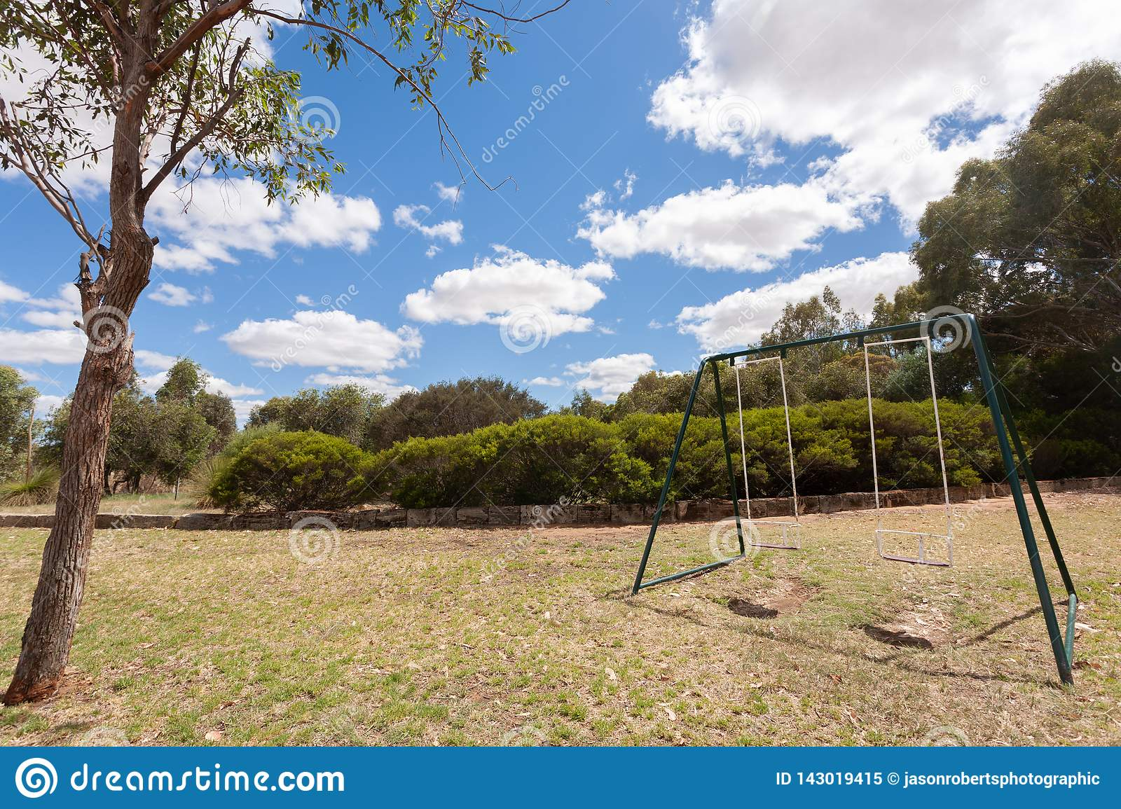 Two empty swings on grass with a small tree in the foreground under a blue sky with some white clouds