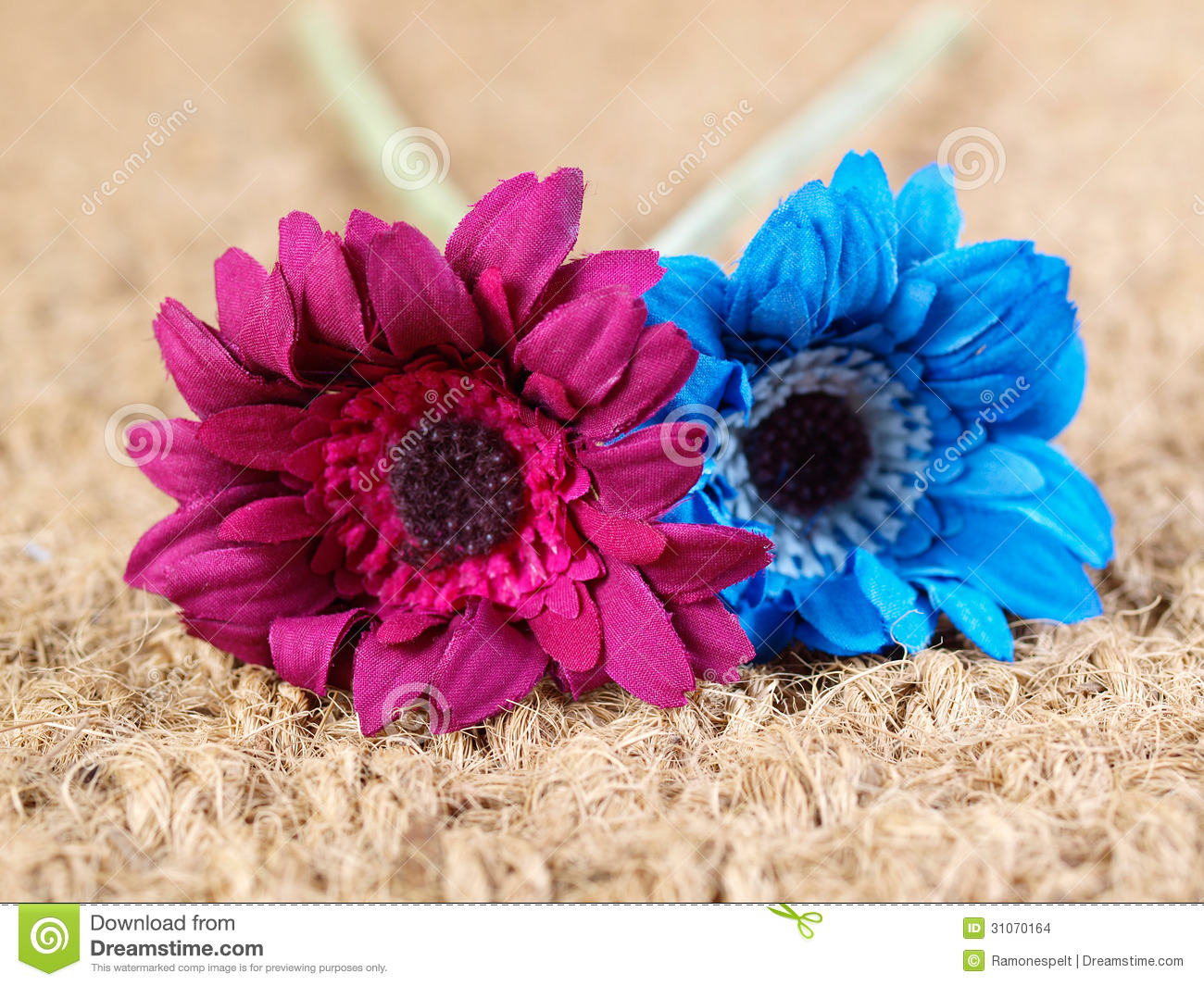 Two fabric flowers of different colors stock photo image of fabric two fabric flowers of different colors mightylinksfo