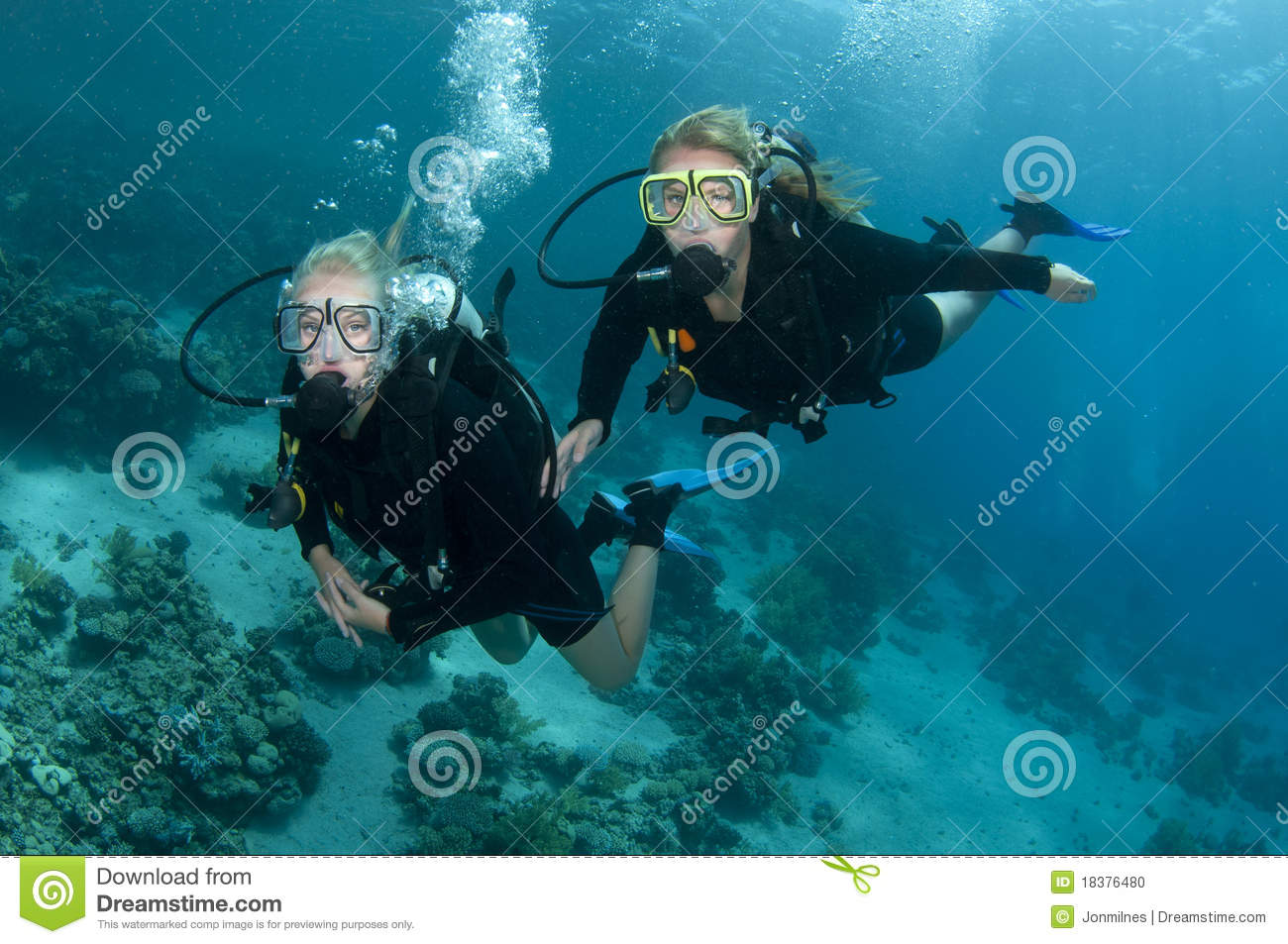 Two Female Scuba Divers Dive Together Stock Photo Image