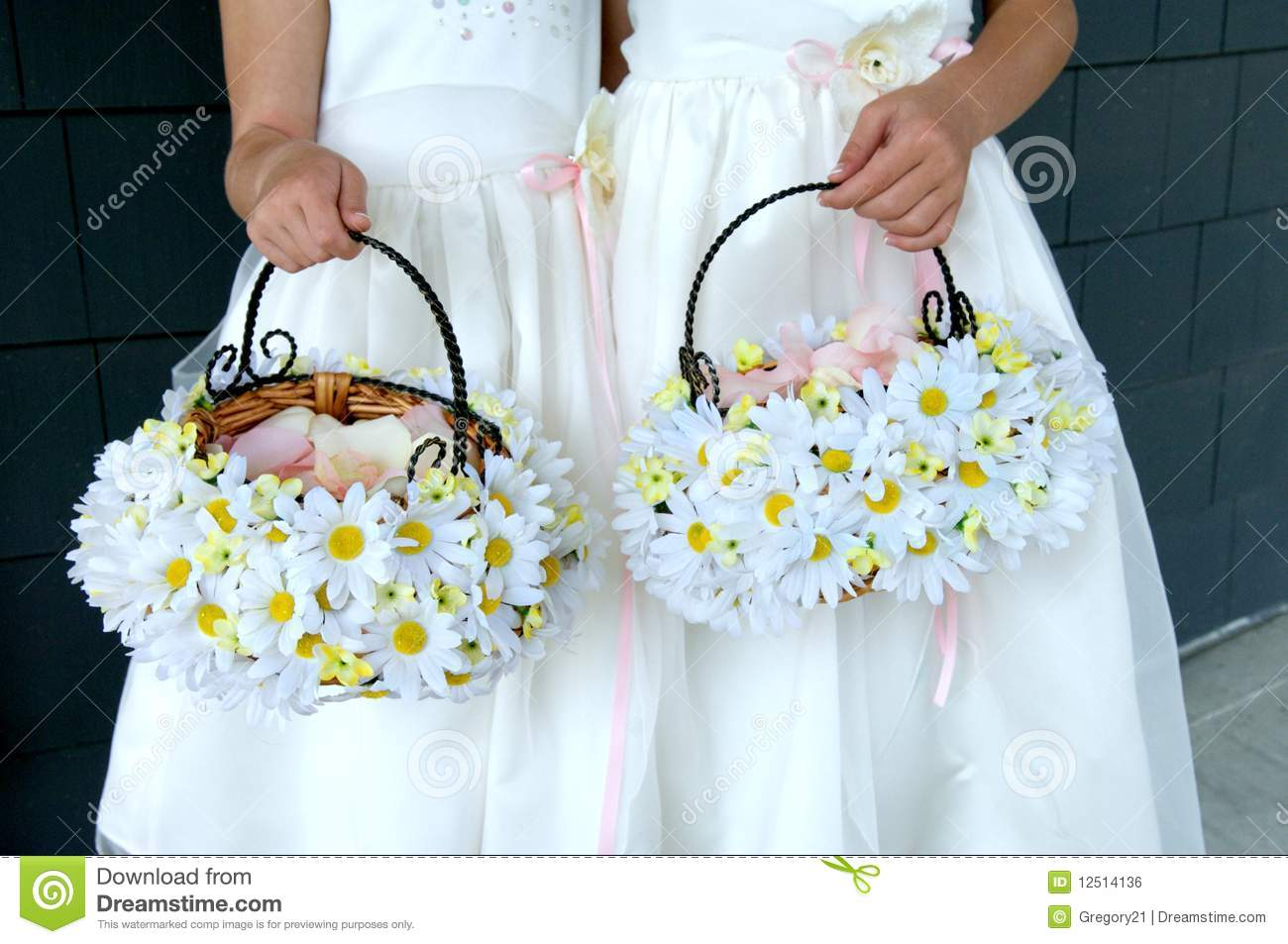 Two Flower Girls Holding Daisy Baskets Stock Photo Image Of