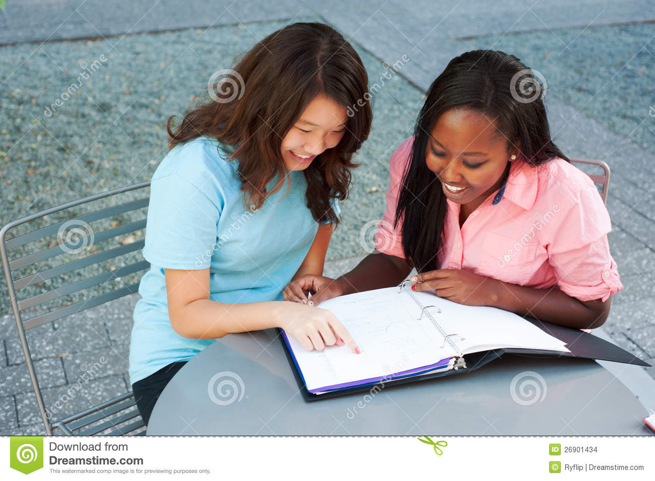 Two Friends Studying Together Stock Images - Image: 26901434