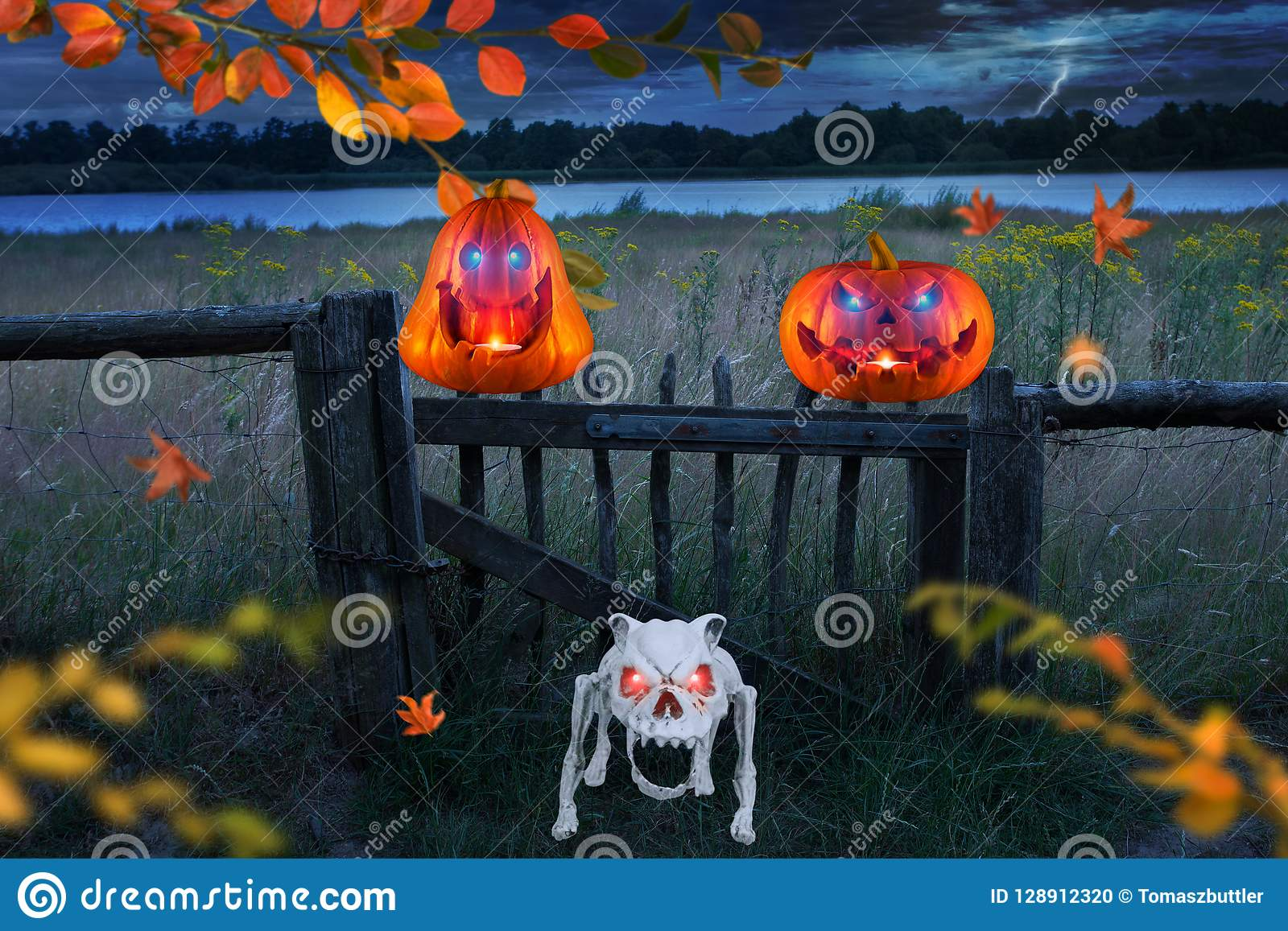 Two funny orange halloween pumpkins with glowing eyes with angry skeleton dog on a stormy windy halloween night