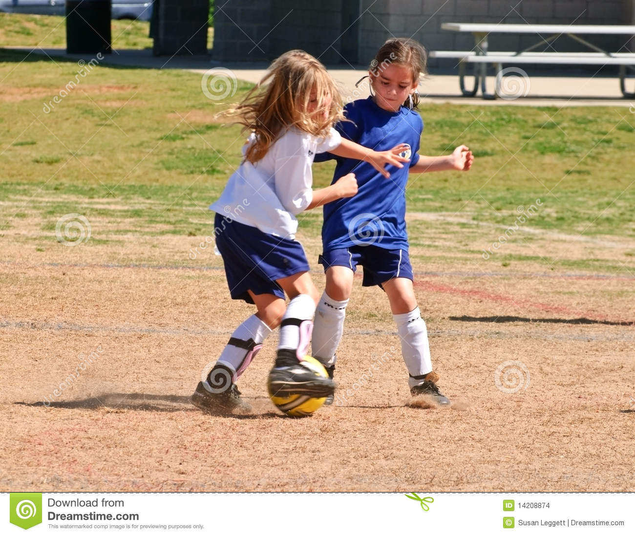 Two Girls Fighting for the Ball/Soccer