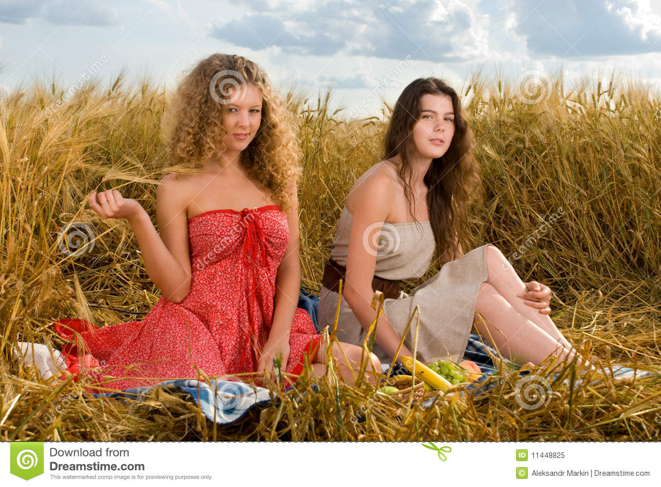 Two Girls On Picnic In Wheat Field Royalty Free Stock Photo Image 11448825