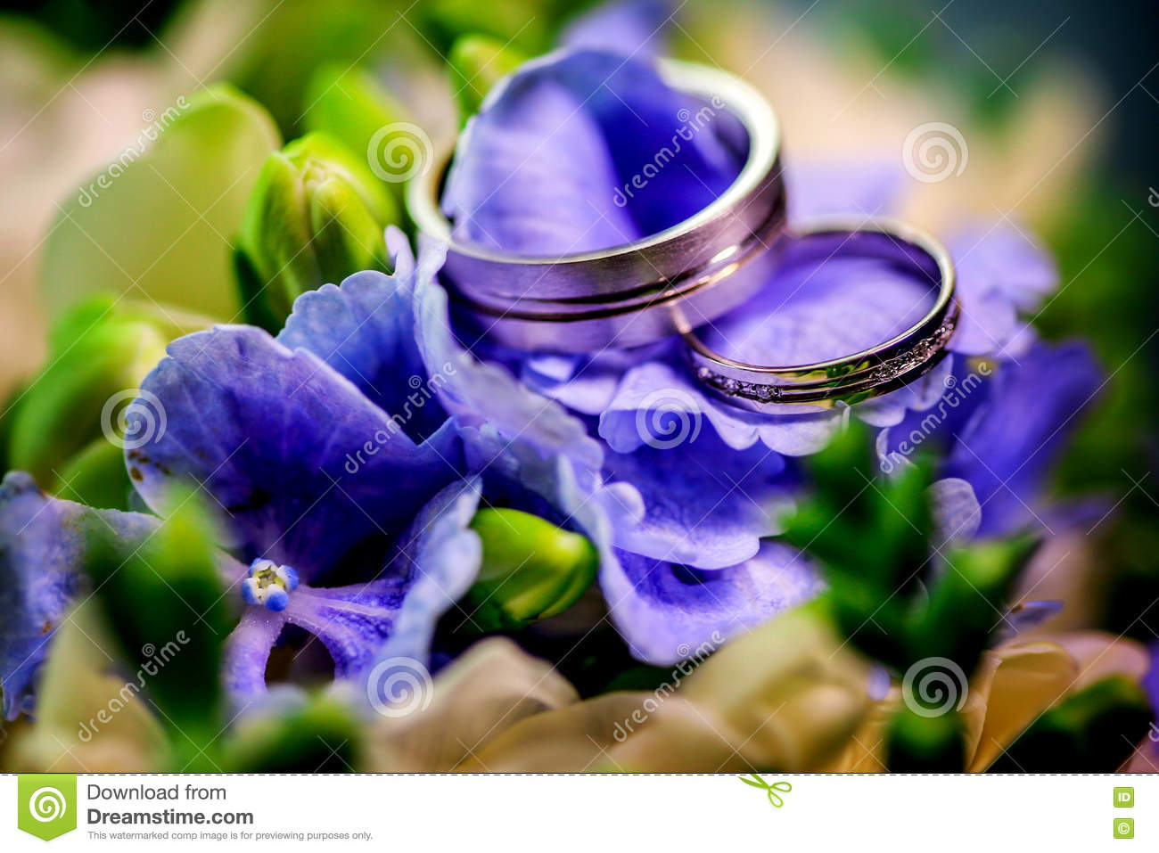 Two Golden Wedding Rings On Background Purple Flowers And ...