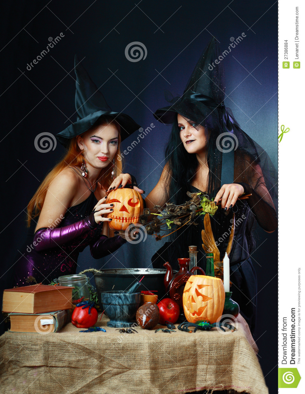 two halloween witches stock photo  image of attractive