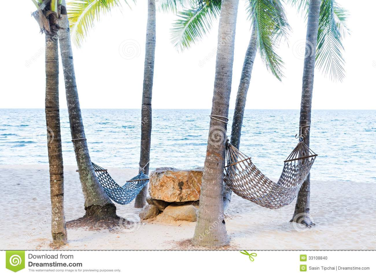 Two Hammock Between Palm Trees Stock Photo Image Of