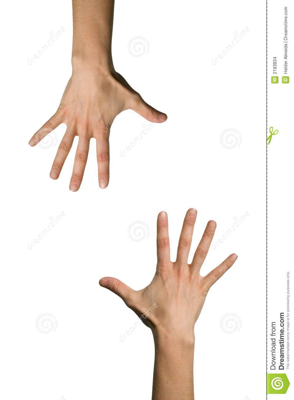 Two Hand Open Stock Images - Image: 2183834