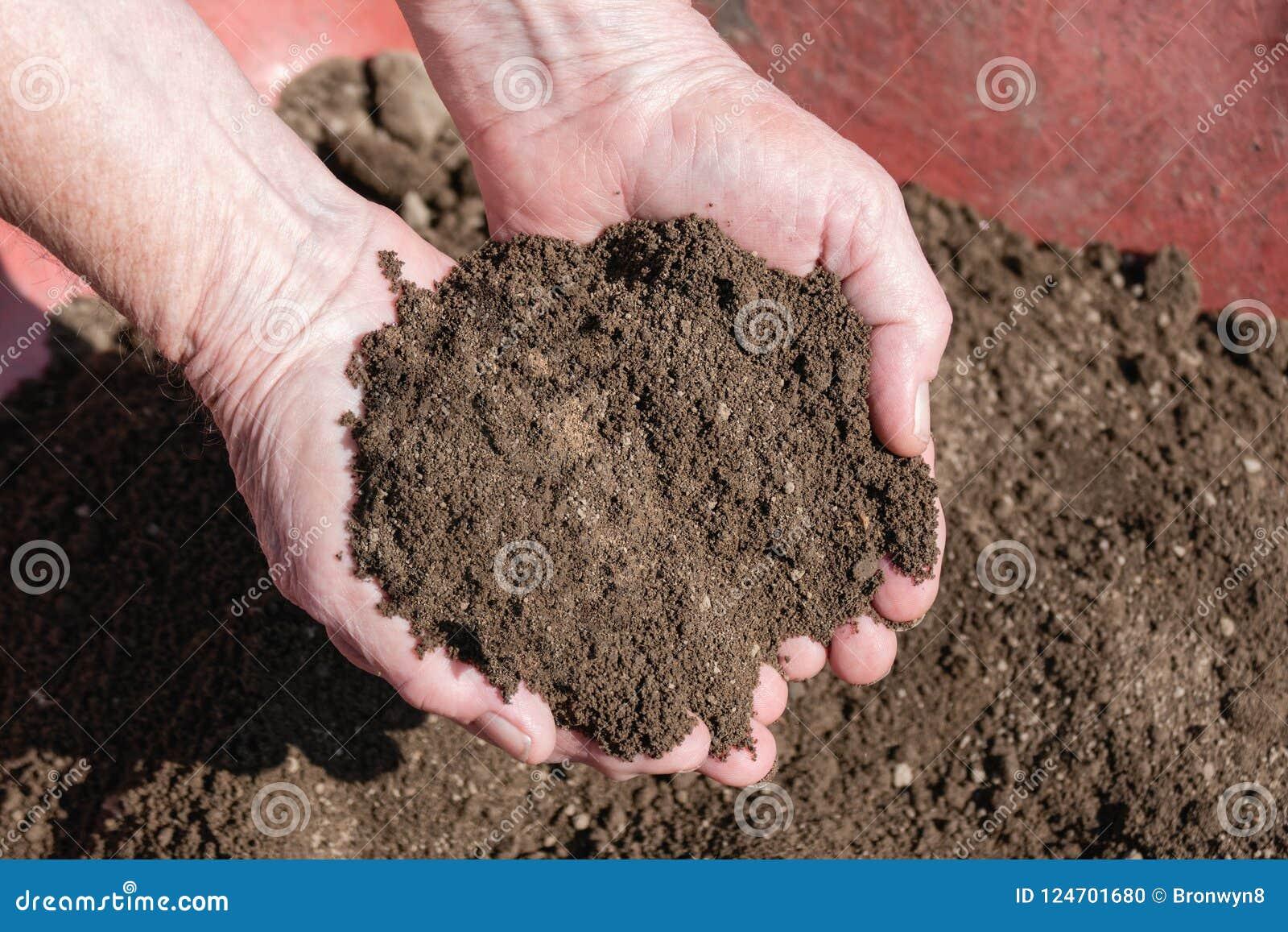 Two Handful Of Fresh Topsoil Stock Photo - Image of humus