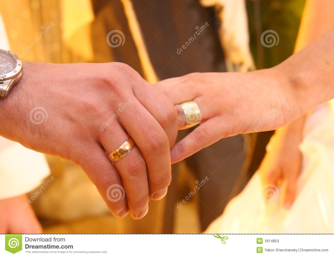 Two Hands With Wedding Rings Stock Image Image of marriage women