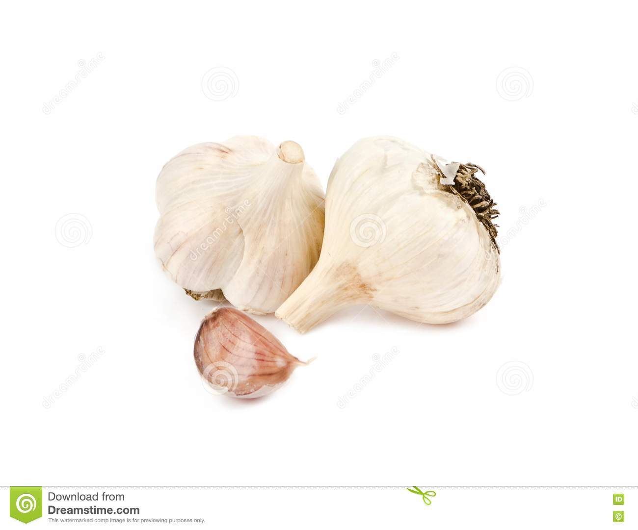 Two Heads Of Garlic And Clove Stock Photo - Image: 24103130