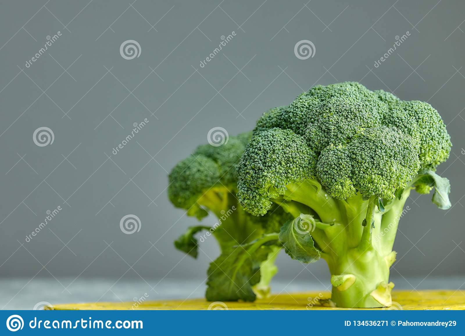 Two heads of healthy salad. fresh green broccoli. horizontal view of green vegetable flower. healthy diet. copy space. green. Two heads of healthy salad. fresh stock image