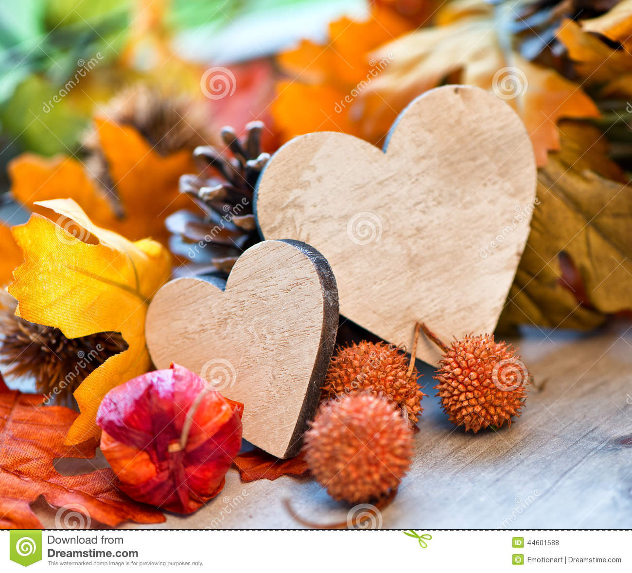 Two Hearts In An Autumn Background Stock Photo Image Of Cycle
