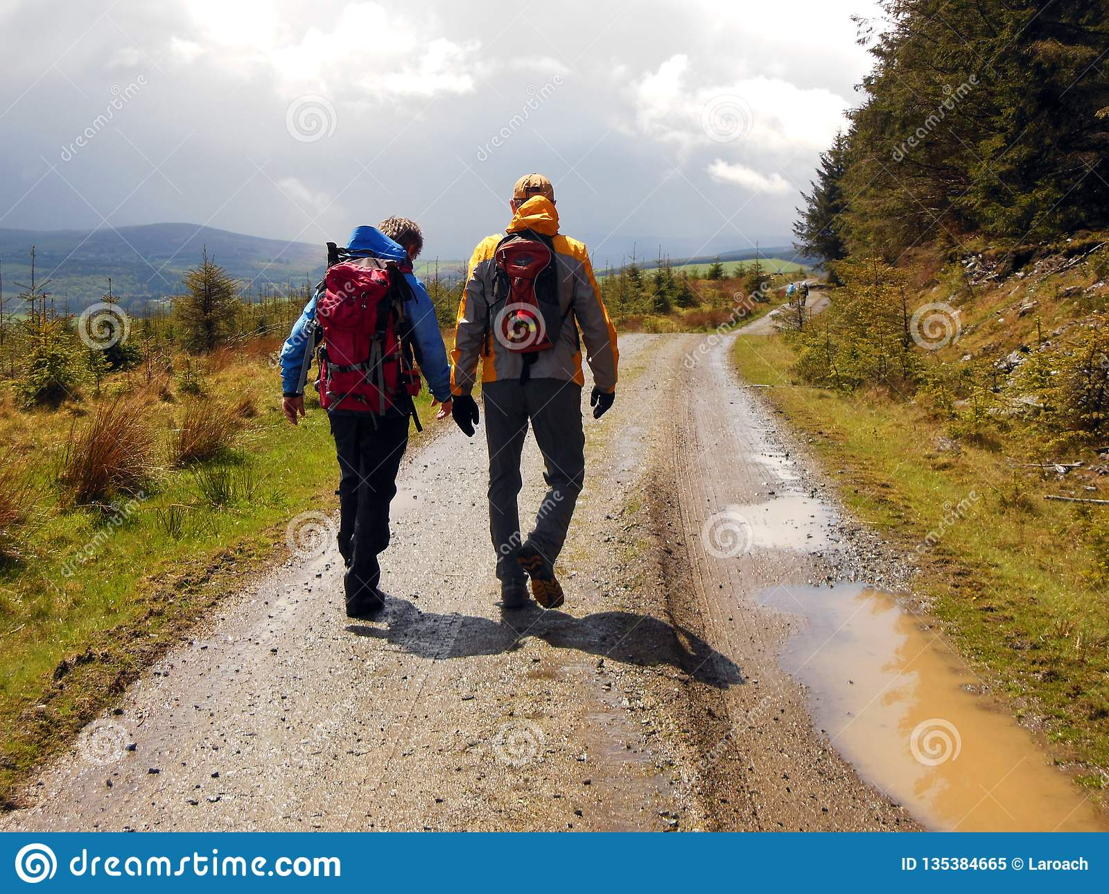 Hiking Back Trails of Ireland